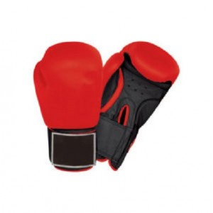 Boxing Gloves for Punching & Kickboxing CHS-005