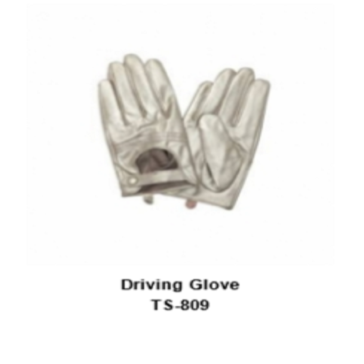 Leather Men's Fashion Driving Gloves Model No. TSI 809