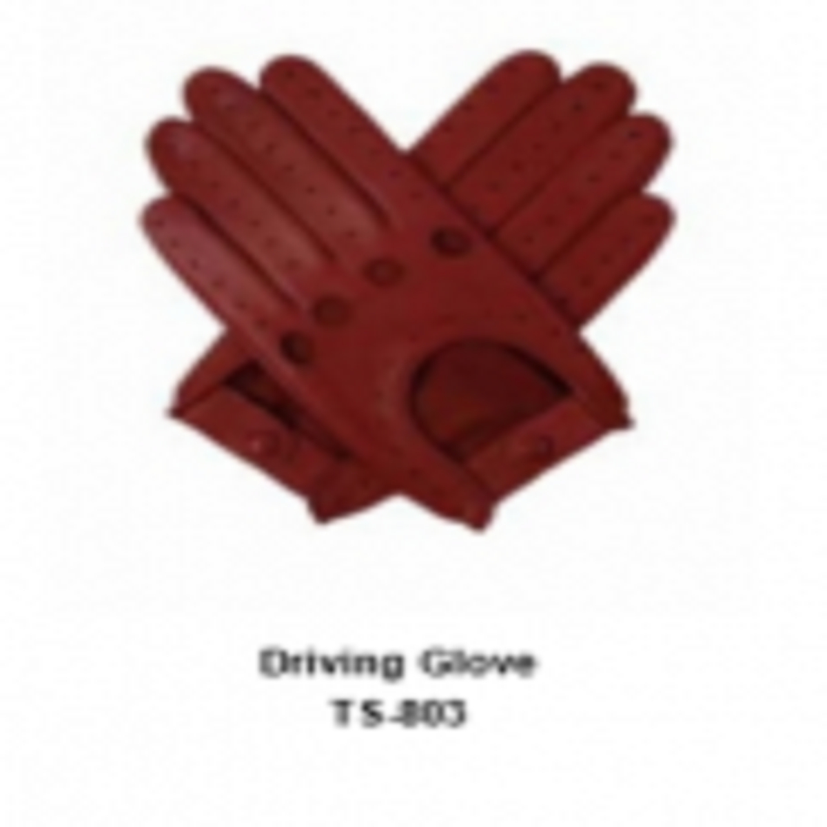 Leather Men's Fashion Driving Gloves Model No. TSI 803