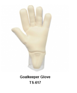 Goalkeeper Gloves with Double Wrist Protection Black Model No. TSI TSI 6017