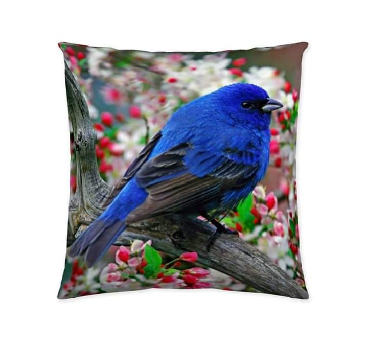 Digital Print Cushion Cover 100% Cotton Satin AIT -002