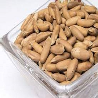 Premium Quality 100% Natural Wild Pine Nuts In-shell FAA-02