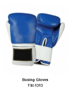 Genuine Leather Pro Style Boxing  Training Gloves TSI 1313