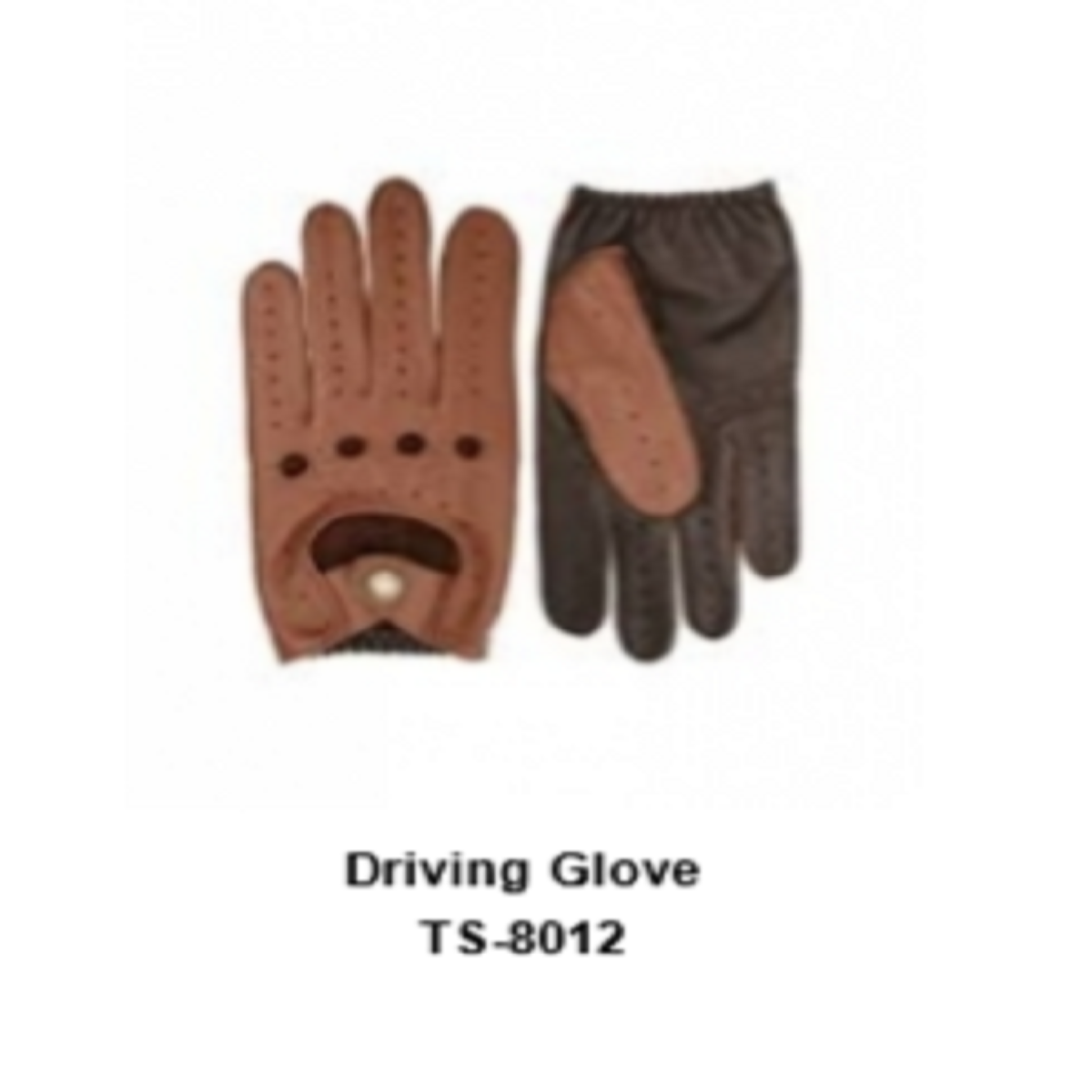Leather Men's Fashion Driving Gloves Model No. TSI 8012