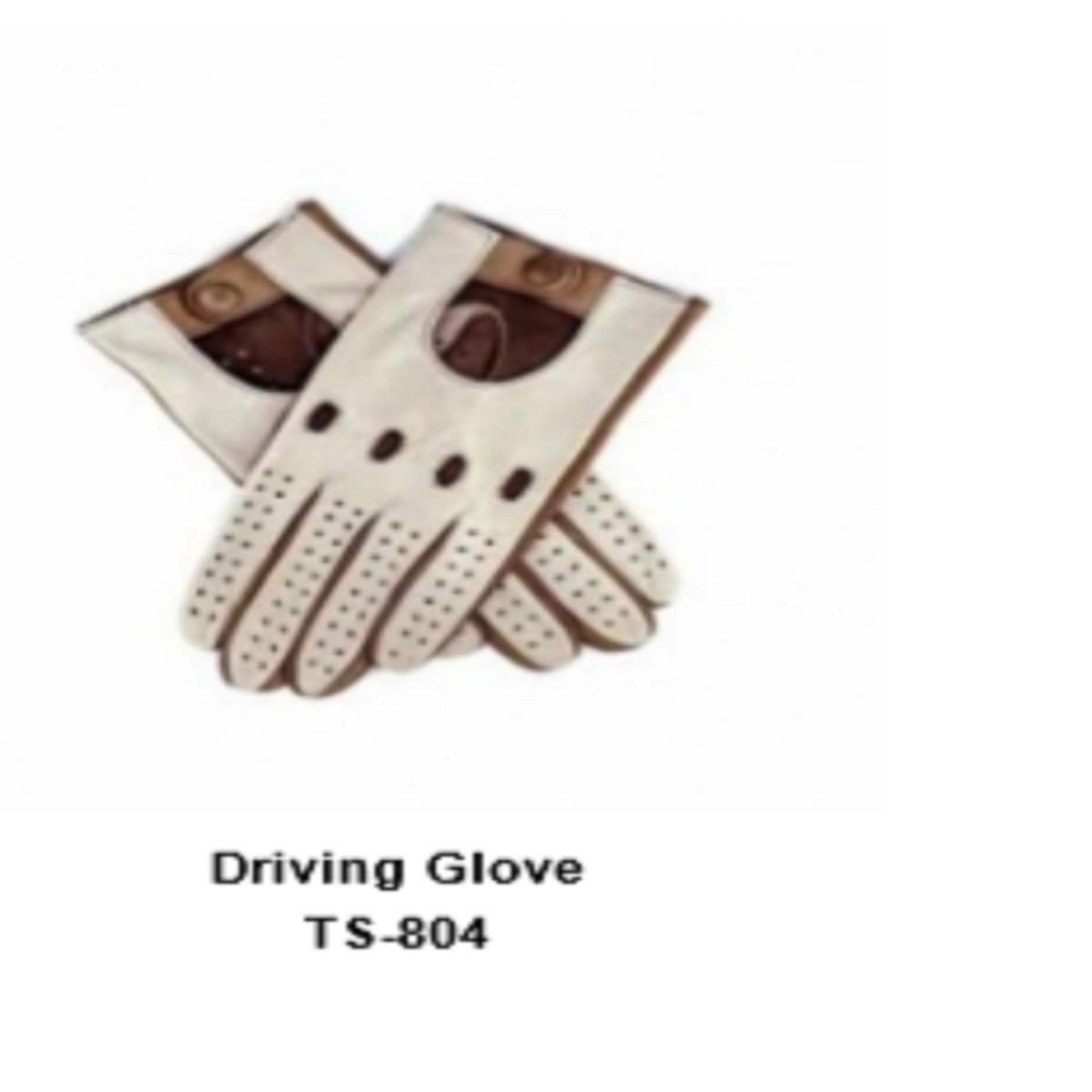 Leather Men's Fashion Driving Gloves Model No. TSI 804