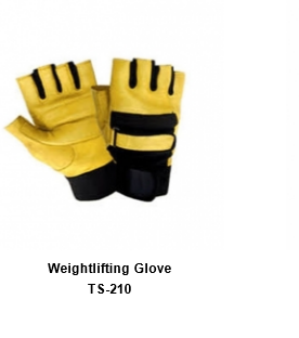 Weight Lifting Gym Workout Gloves with Wrist Wrap Support for Men & Women TSI  210
