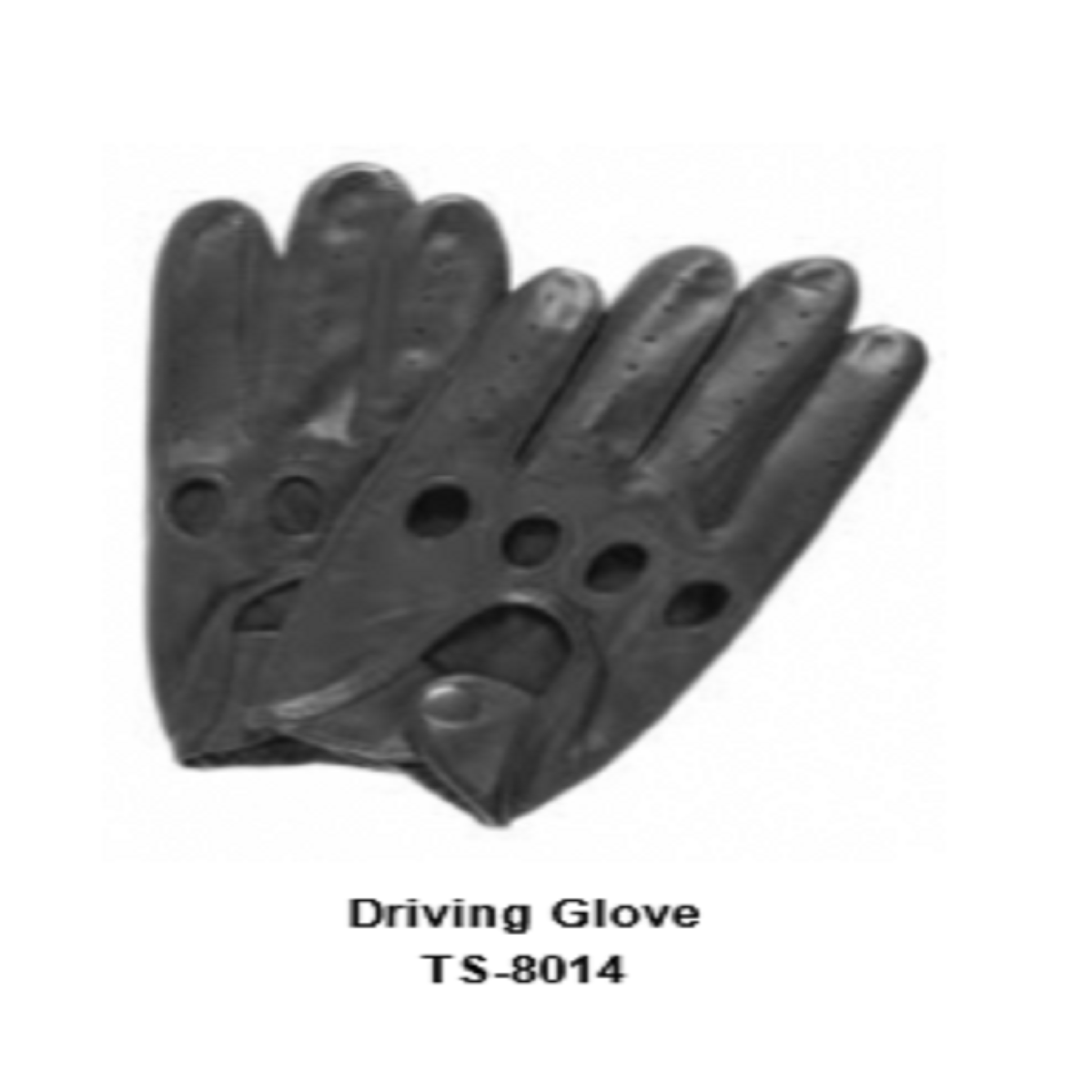 Leather Men's Fashion Driving Gloves Model No. TSI 8014